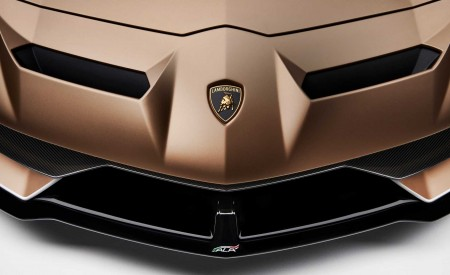 2020 Lamborghini Aventador SVJ Roadster Badge Wallpaper 450x275 (32)
