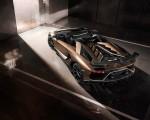 2020 Lamborghini Aventador SVJ Roadster Rear Wallpapers 150x120 (4)