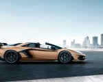 2020 Lamborghini Aventador SVJ Roadster Side Wallpapers 150x120 (2)