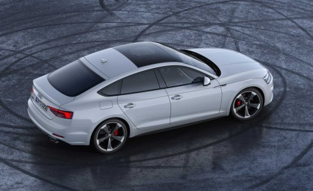 2019 Audi S5 Sportback TDI Rear Three-Quarter Wallpapers 450x275 (12)