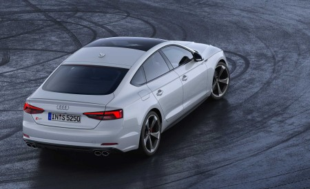 2019 Audi S5 Sportback TDI Rear Wallpapers 450x275 (13)