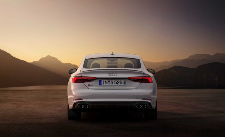 2019 Audi S5 Sportback TDI Rear Wallpapers 450x275 (10)