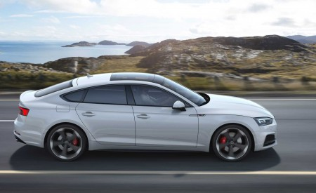 2019 Audi S5 Sportback TDI Side Wallpapers 450x275 (4)