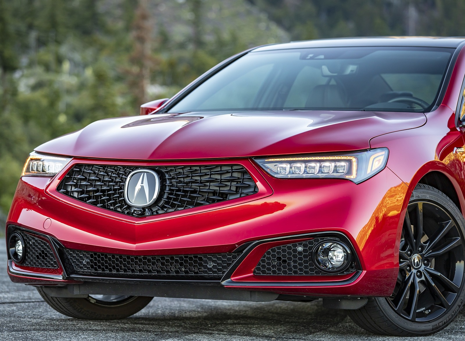 2020 Acura TLX PMC Edition Front Wallpapers (15)