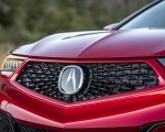 2020 Acura TLX PMC Edition Grill Wallpapers 150x120 (14)