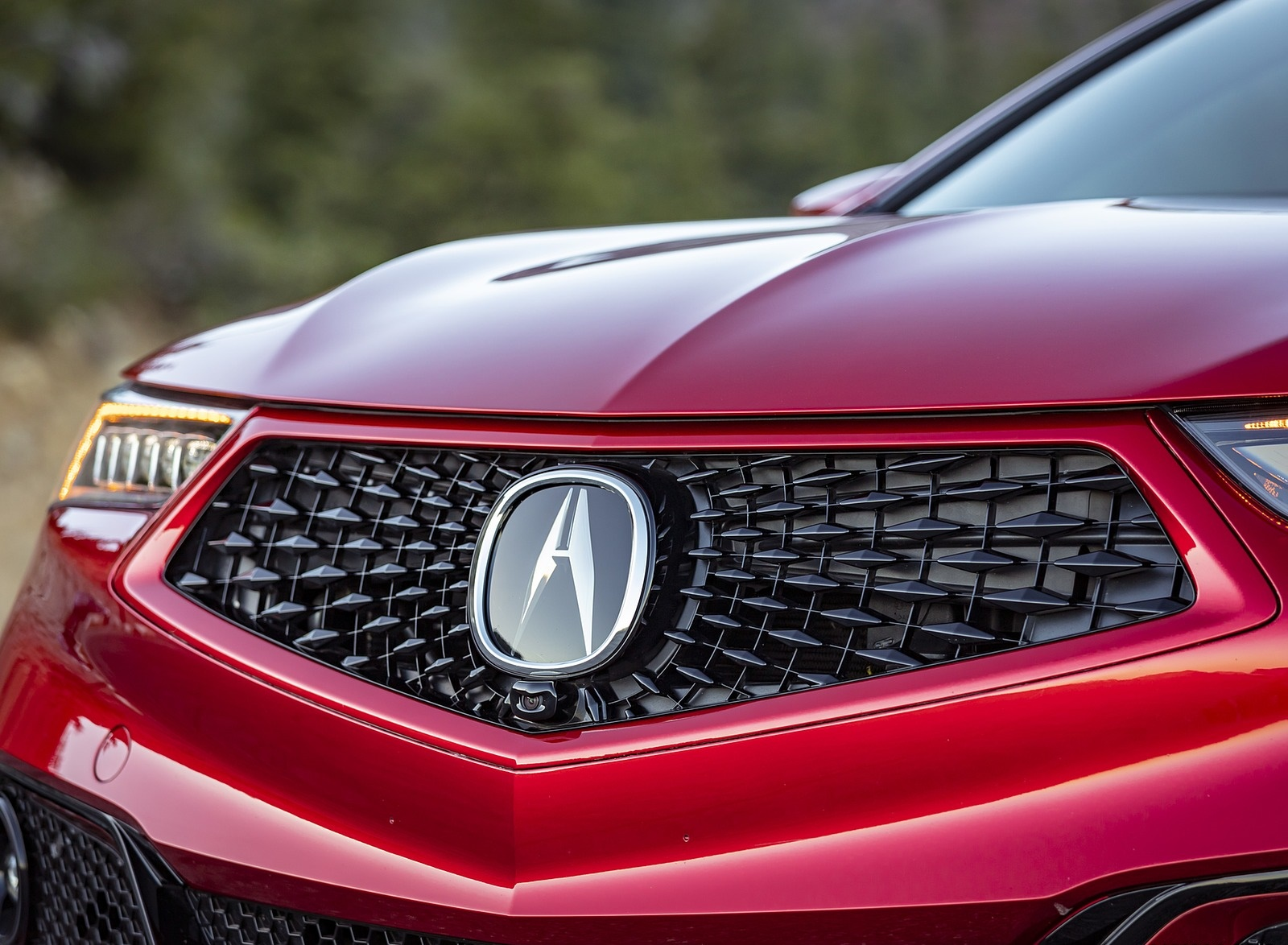 2020 Acura TLX PMC Edition Grill Wallpapers (14)