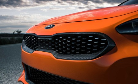 2020 Kia Stinger GTS Grill Wallpaper 450x275 (11)