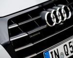 2020 Audi Q5 TFSI e Plug-In Hybrid (Color: Glacier White) Grill Wallpapers 150x120 (39)