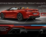 2020 BMW M8 Competition Convertible Technology Wallpapers 150x120 (48)