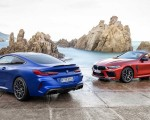 2020 BMW M8 Competition Coupe and Convertible Wallpapers 150x120 (21)