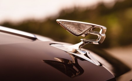 2020 Bentley Flying Spur (Color: Cricket Ball) Hood Ornament Wallpapers 450x275 (122)