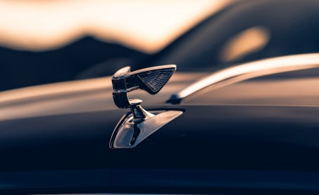 2020 Bentley Flying Spur (Color: Dark Sapphire) Hood Ornament Wallpapers 450x275 (15)