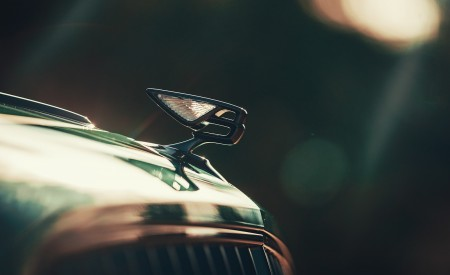 2020 Bentley Flying Spur (Color: Verdant) Hood Ornament Wallpapers 450x275 (40)