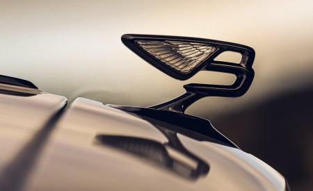 2020 Bentley Flying Spur (Color: White Sand) Hood Ornament Wallpapers 450x275 (98)