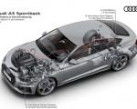 2020 Audi A5 Sportback Mild hybrid 12 volt drivetrain Wallpapers 150x120 (20)