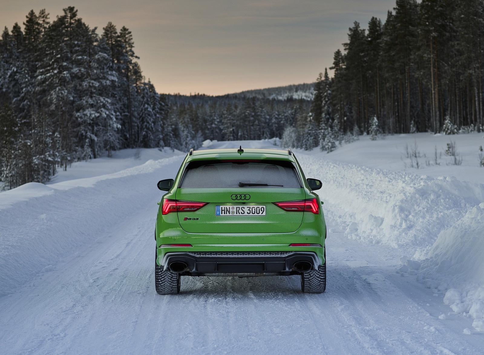 2020 Audi RS Q3 (Color: Kyalami Green) Rear Wallpapers #35 of 116
