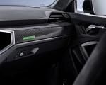 2020 Audi RS Q3 Sportback Interior Detail Wallpapers 150x120 (43)
