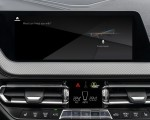 2020 BMW 2 Series 220d Gran Coupe M Sport (Color: Storm Bay Metallic) Central Console Wallpapers 150x120 (36)