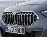 2020 BMW 2 Series 220d Gran Coupe M Sport (Color: Storm Bay Metallic) Grill Wallpapers 150x120 (26)