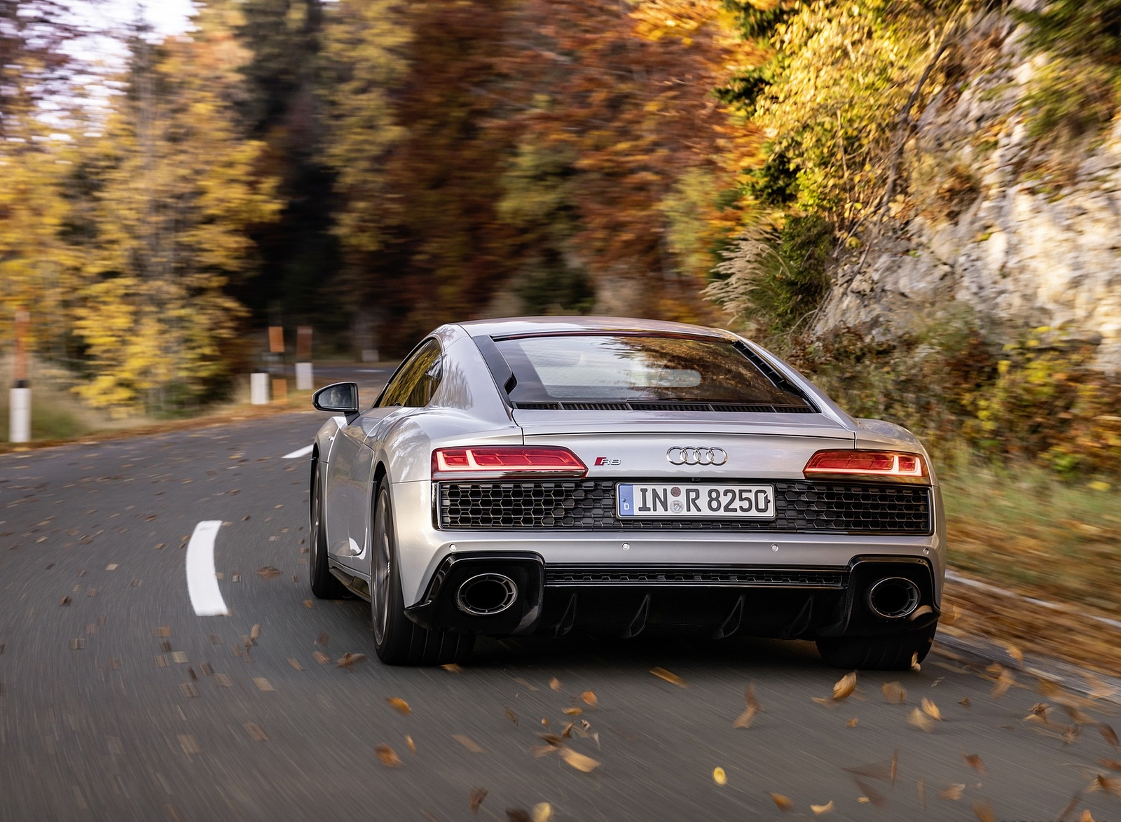 2020 Audi R8 V10 RWD Coupe (Color: Florett Silver) Rear Wallpapers (9)
