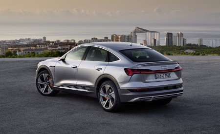 2020 Audi e-tron Sportback (Color: Florett Silver) Rear Wallpapers 450x275 (74)