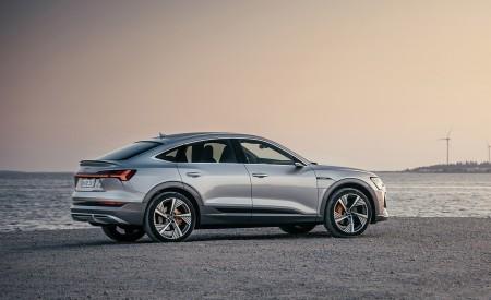 2020 Audi e-tron Sportback (Color: Florett Silver) Side Wallpapers 450x275 (66)