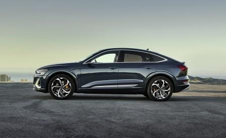 2020 Audi e-tron Sportback (Color: Plasma Blue) Side Wallpapers 450x275 (54)