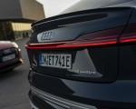 2020 Audi e-tron Sportback (Color: Plasma Blue) Tail Light Wallpapers 150x120 (29)