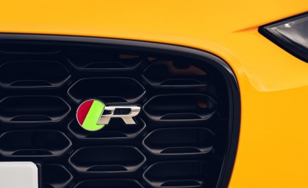 2021 Jaguar F-TYPE R Coupe AWD (Color: Sorrento Yellow) Grill Wallpapers 450x275 (30)