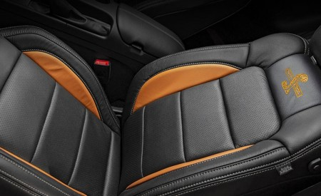 2020 Ford Mustang Shelby Super Snake Bold Edition Interior Seats Wallpapers 450x275 (13)