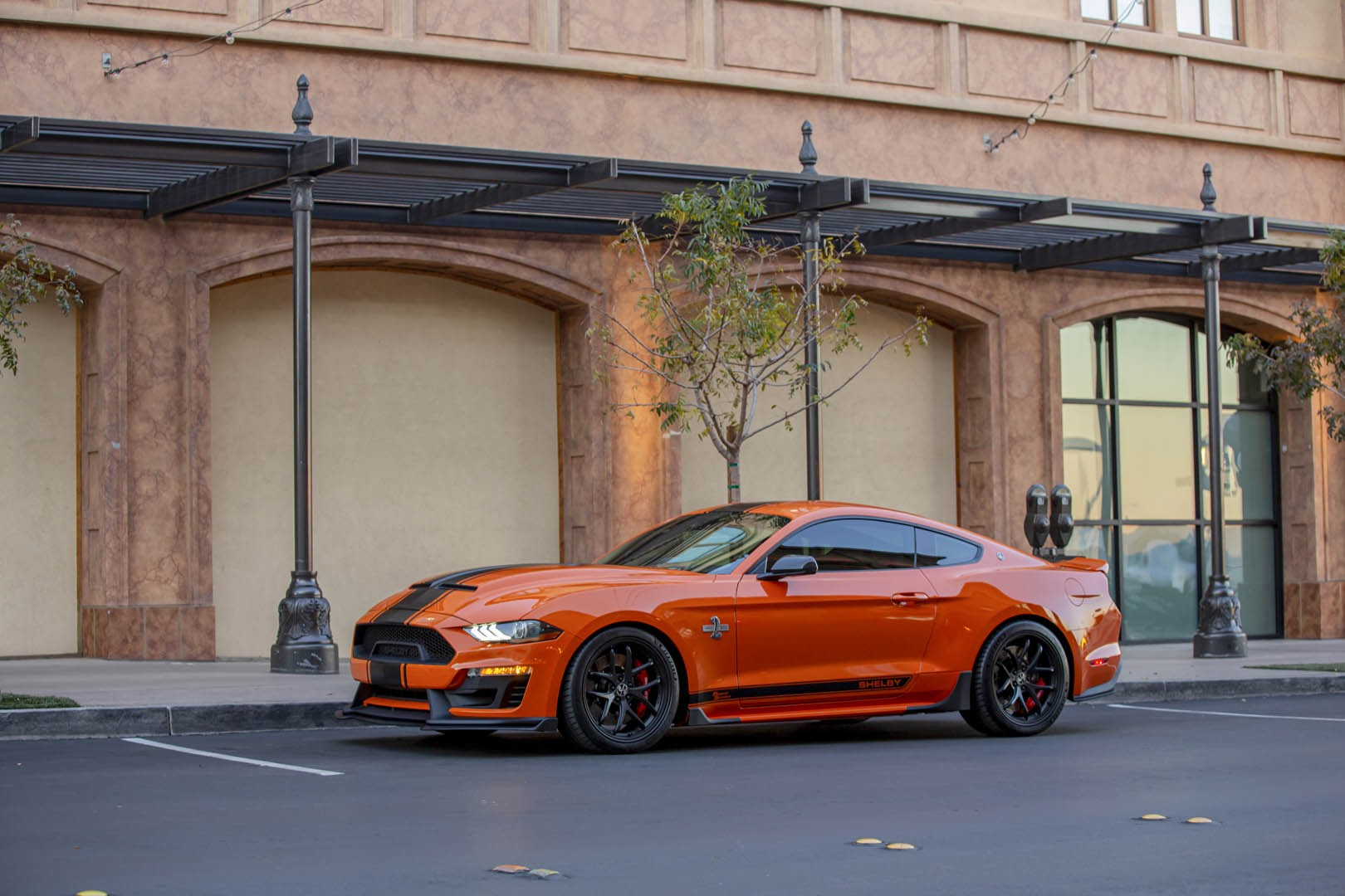 2020 Ford Mustang Shelby Super Snake Bold Edition Side Wallpapers (10)