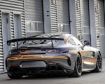 2020 Mercedes-AMG GT4 Rear Three-Quarter Wallpapers 150x120 (6)