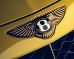 2021 Bentley Mulliner Bacalar Badge Wallpapers 150x120 (9)