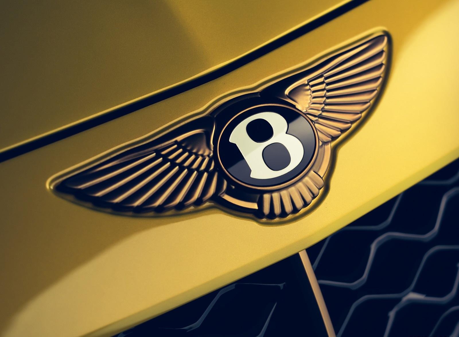 2021 Bentley Mulliner Bacalar Badge Wallpapers (9)