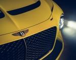 2021 Bentley Mulliner Bacalar Grill Wallpapers 150x120 (10)