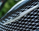 2021 Chrysler Pacifica Pinnacle AWD Grill Wallpapers 150x120 (35)