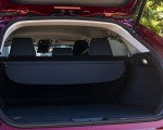 2021 Toyota Venza Hybrid LE Trunk Wallpapers 150x120 (40)