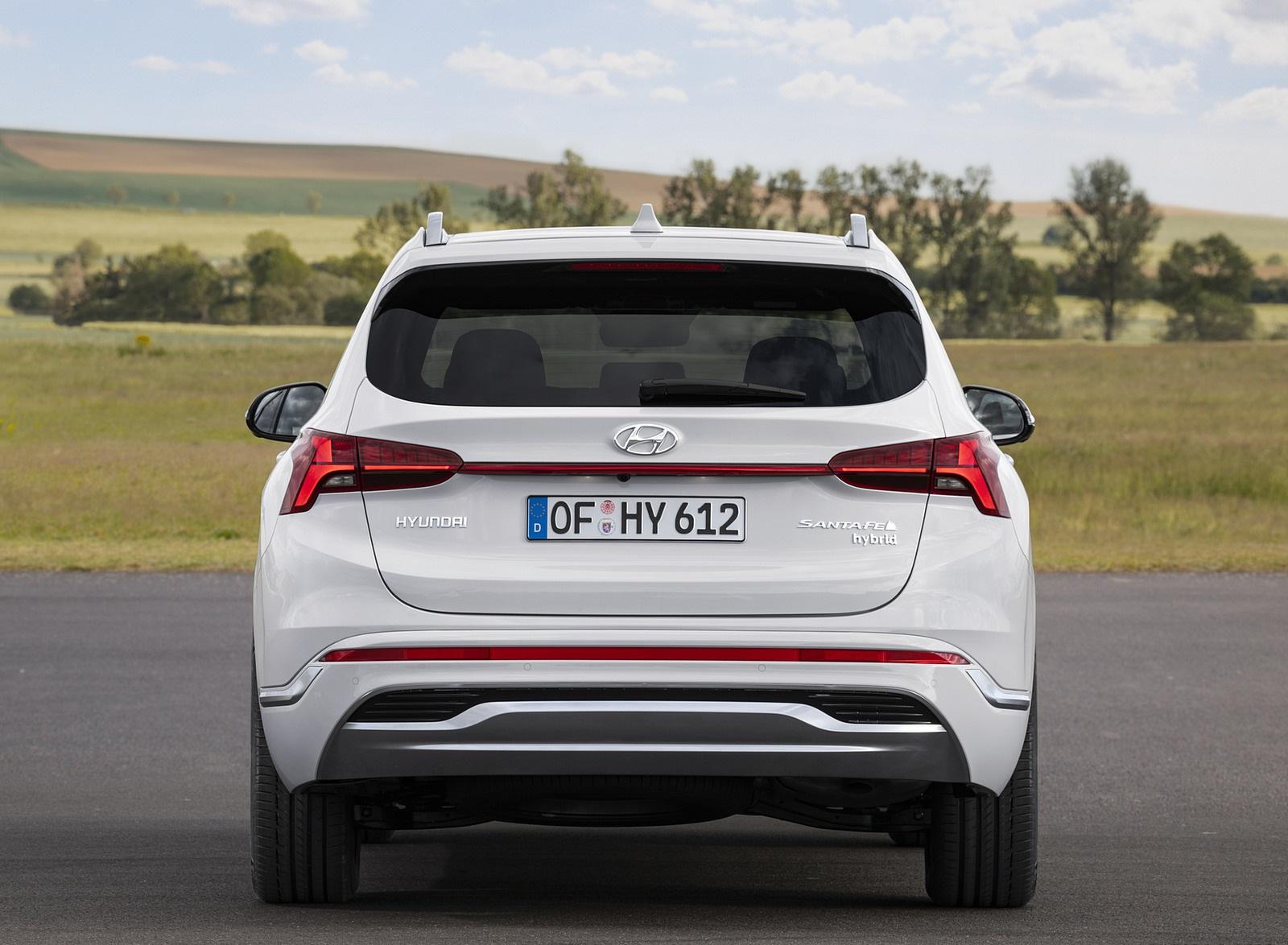 2021 Hyundai Santa Fe Rear Wallpapers (9)