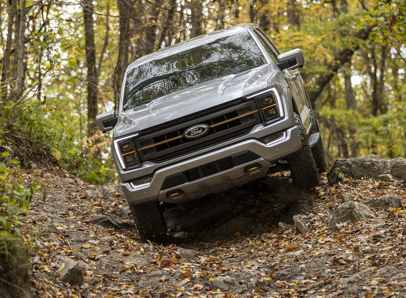 2021 Ford F-150 Tremor Off-Road Wallpapers (9)