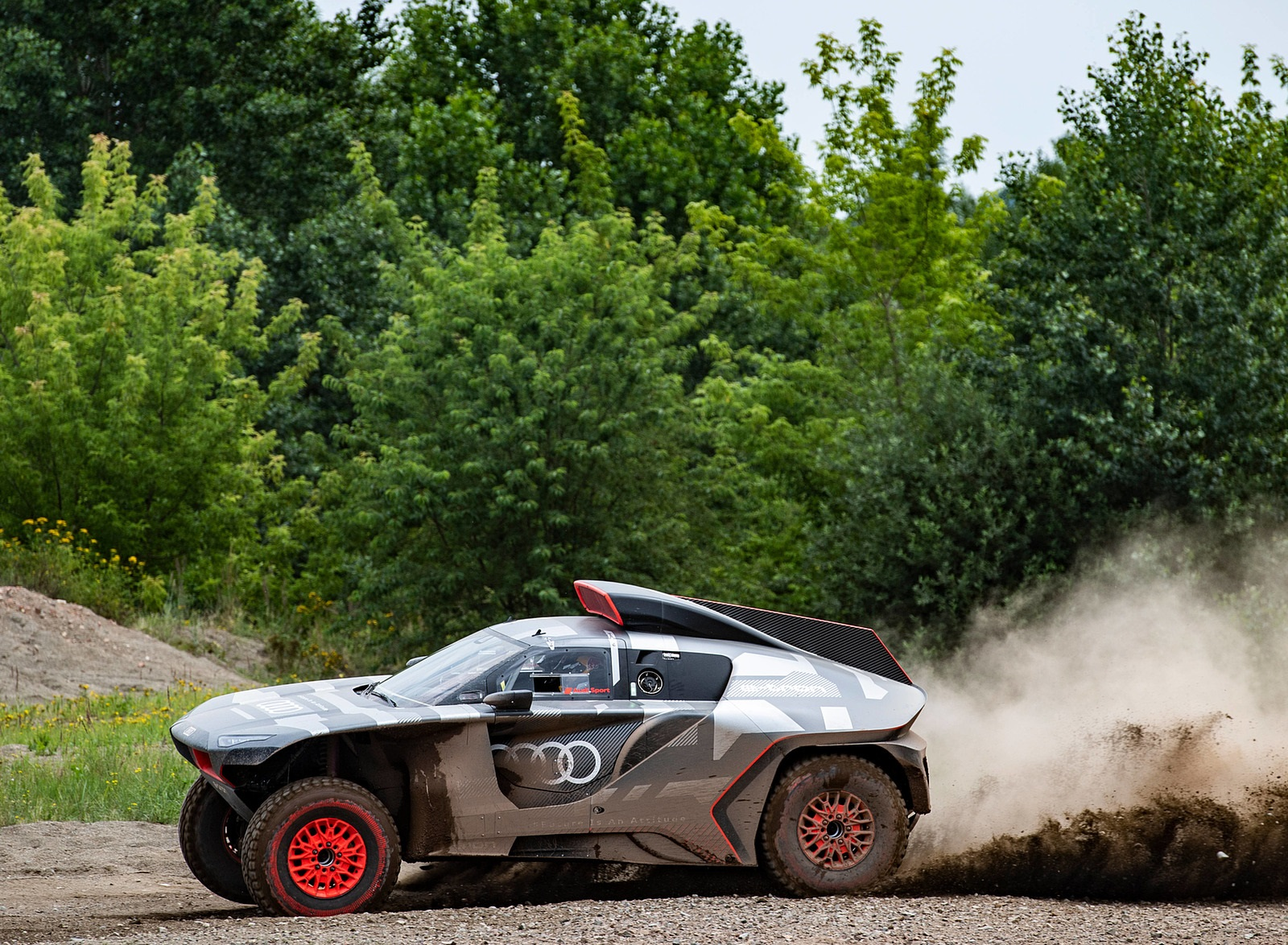 2022 Audi RS Q e-tron Dakar Rally Testing Wallpapers (7)