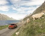 2022 Porsche Macan S (Color: Papaya Metallic) Front Wallpapers 150x120 (45)